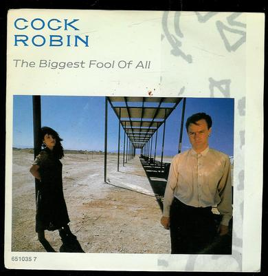 COOK, ROBIN: THE BIGGEST FOOL OF ALL, BLOOD OF A SAINT. 1987
